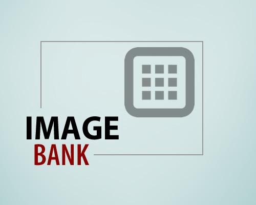 image_bank